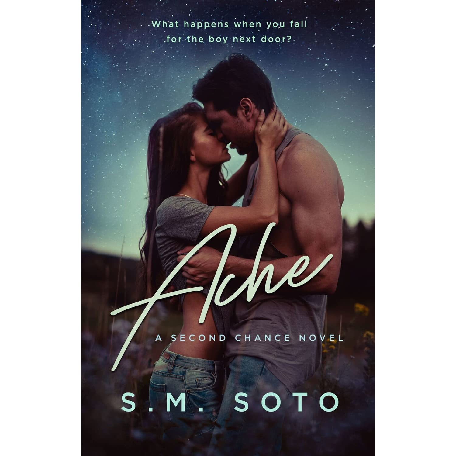 Image result for ache by sm soto