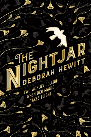 The Nightjar by Deborah Hewitt