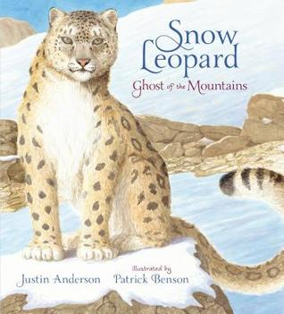 Snow Leopard by Justin Anderson