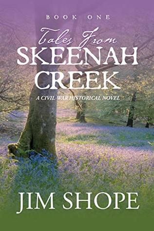 Tales From Skeenah Creek: A Civil War Historical Fiction Novel