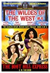 The Wildes of the West #4 The Boot Hill Express (The Danger Down Mexico Way Trilogy Book 3): Old west fiction of action adventure, romance & western family drama