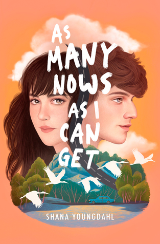 {Tour} As Many Nows as I Can Get by Shana Youngdahl (Author Interview!)