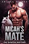 Micah's Mate (The Quinton Shifters Book 2)