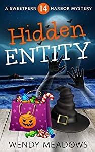 Hidden Entity (Sweetfern Harbor #14)