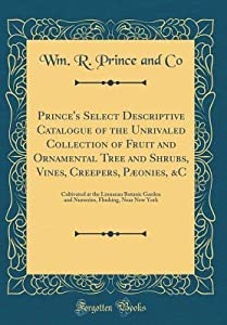 Prince's Select Descriptive Catalogue of the Unrivaled Collection of Fruit and Ornamental Tree and Shrubs, Vines, Creepers, P�onies, &c: Cultivated at the Linnaean Botanic Garden and Nurseries, Flushing, Near New York