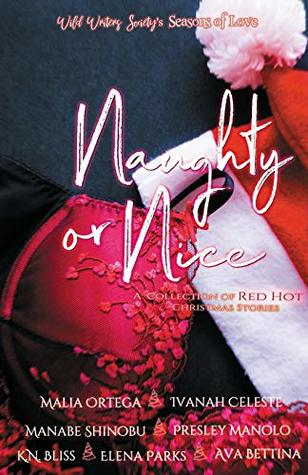 Naughty or Nice: A Collection of Red Hot Christmas Stories (Wild Writers Society's Seasons of Love)