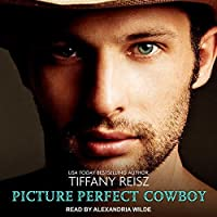 Picture Perfect Cowboy (The Original Sinners, #10)