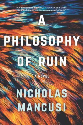 A Philosophy of Ruin