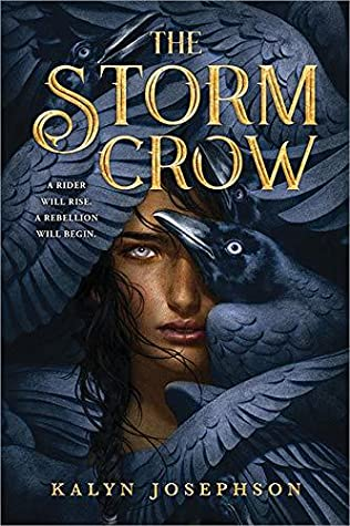 Image result for the storm crow book