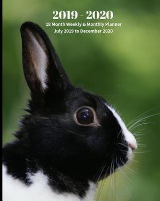 December 2020 Calendar Animals 2019   2020 18 Month Weekly & Monthly Planner July 2019 to