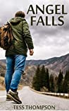 Angel Falls: A Th...