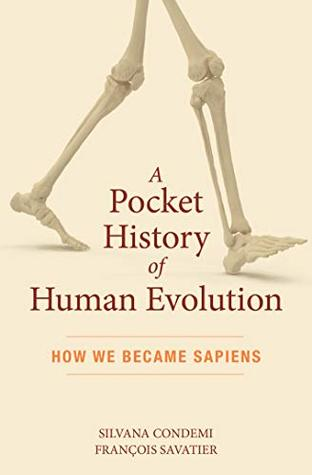 A Pocket History of Human Evolution: How We Became Sapiens