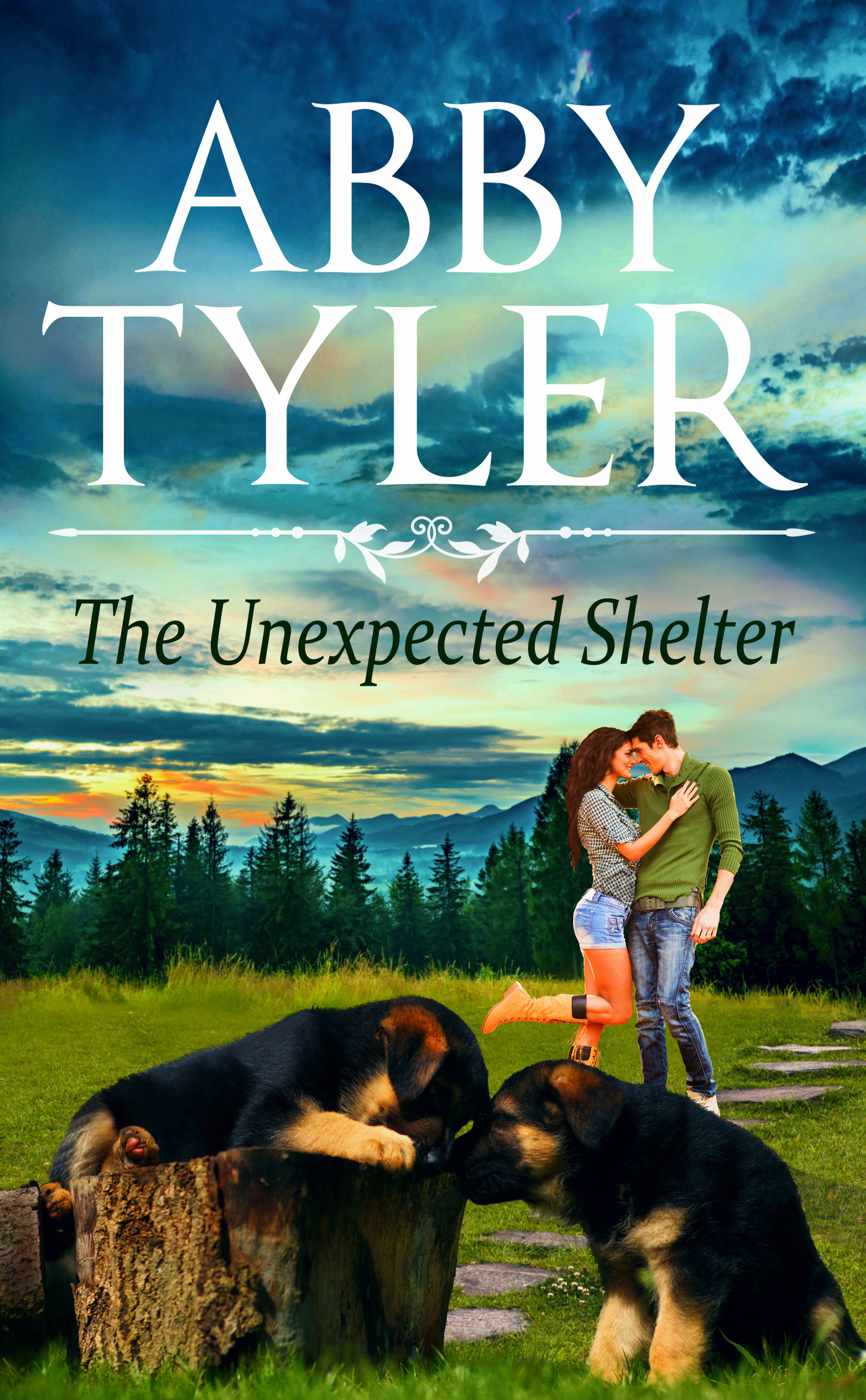 The Unexpected Shelter