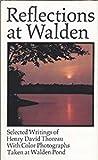 Reflections at Walden