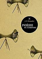 Poésie du gérondif : Vagabondages linguistiques d'un passionné de peuples et de mots