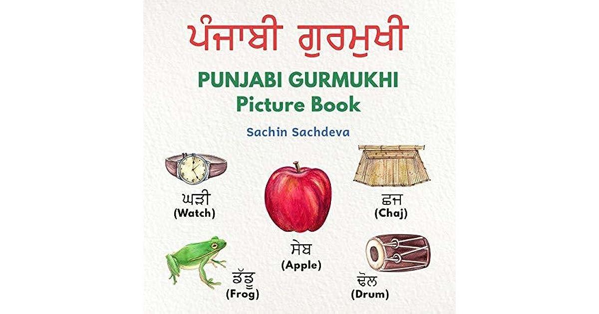 PUNJABI GURMUKHI Picture Book: Your First book for Punjabi Learning