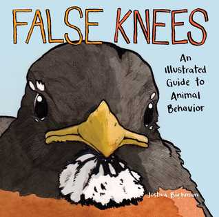 False Knees by Joshua Barkman