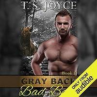 Gray Back Bad Bear (Gray Back Bears, #1)