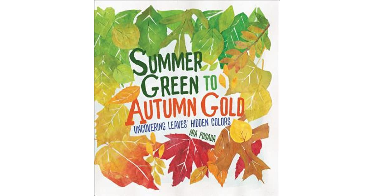 Summer Green To Autumn Gold Uncovering Leaves Hidden Colors By Mia