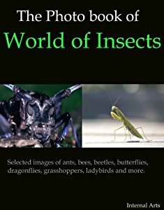 The Photo book of World of Insects. Selected Images of ants, bees, beetles, butterflies, dragonflies, grasshoppers, ladybirds and more.