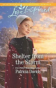 Shelter from the Storm (North Country Amish #2)