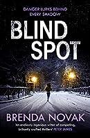 Blind Spot (The Evelyn Talbot Chronicles, #4)