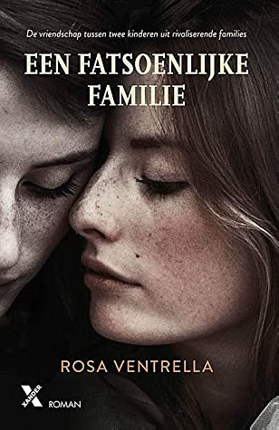 Een fatsoenlijke familie by Rosa Ventrella