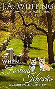 When Fortune Knocks (Claire Rollins #7)