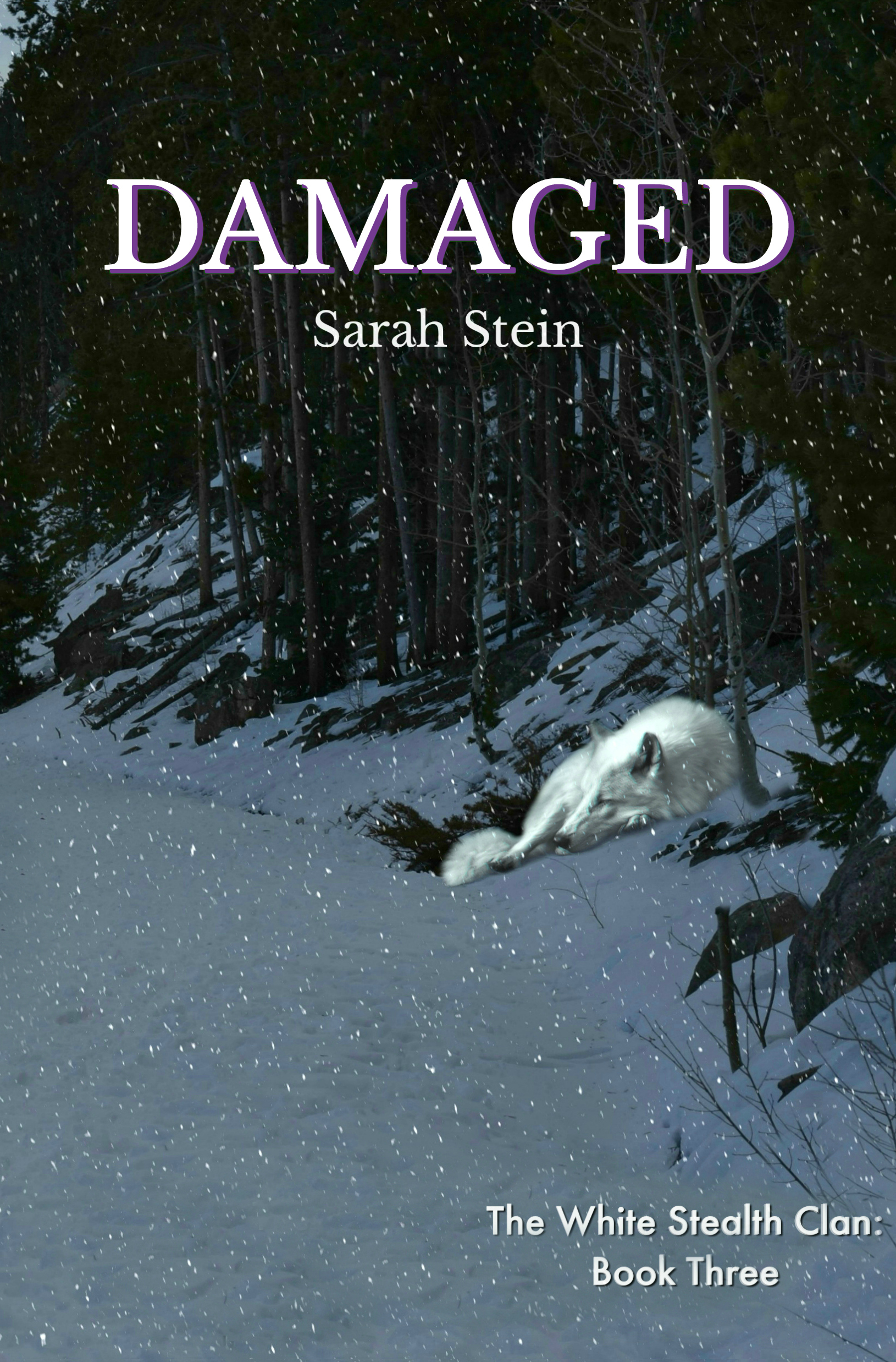 Damaged (The White Stealth Clan, #3)