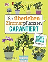 So überleben Zimmerpflanzen garantiert: Grüner Daumen für Anfänger