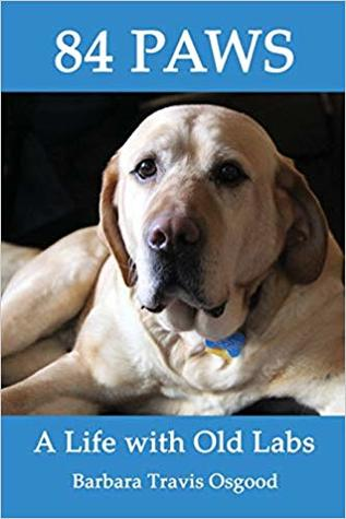 84 Paws: A Life with Old Labs