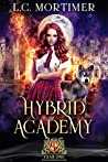Hybrid Academy: Year One