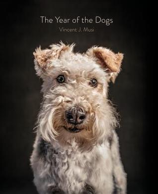The Year of the Dogs by Vincent J. Musi