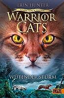 Wütender Sturm (Warrior Cats: Vision der Schatten; #6)