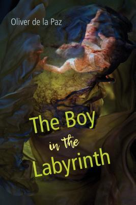 The Boy in the Labyrinth: Poems