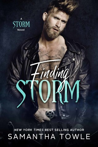 Finding Storm (The Storm, #4)
