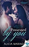 Possessed By You (The Consumed #3)