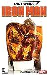 Tony Stark: Iron Man, Vol. 2: Stark Realities