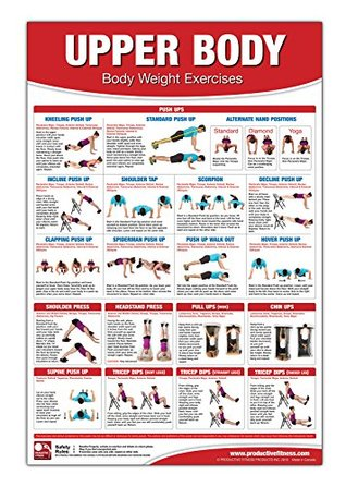 bodyweight training poster/chart  upper body chest