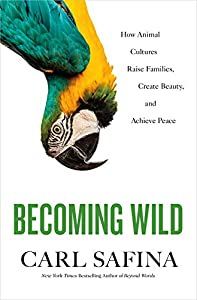 Becoming Wild: How Animals Learn Who They Are