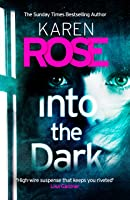 Into the Dark (Romantic Suspense #23; Cincinnati #5)
