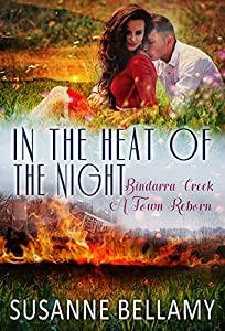 In the Heat of the Night (Bindarra Creek A Town Reborn #2)