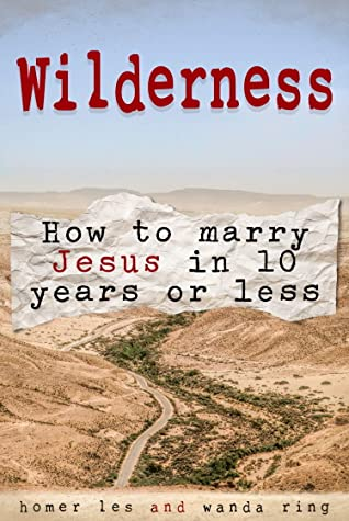 Wilderness How to Marry Jesus in 10 Years or Less