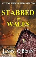 Stabbed in Wales (Gabriella Darin #2)