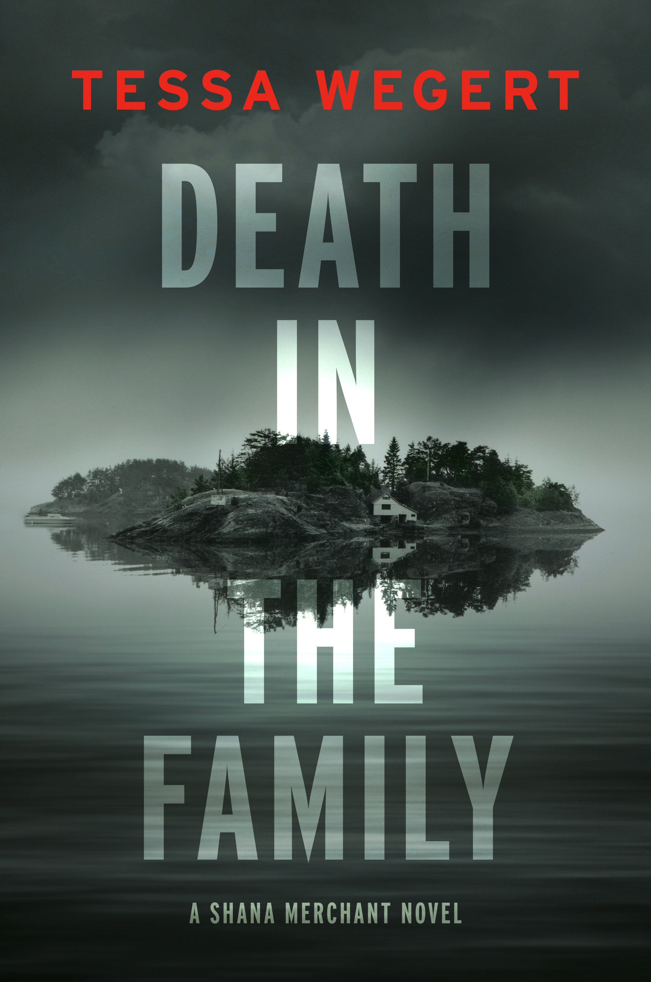 Death in the Family (Shana Merchant, #1)