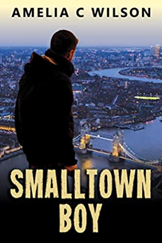Smalltown Boy by Amelia C. Wilson