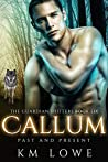 Callum: Past And Present (The Guardian Shifters #6)