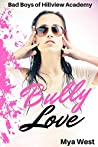 Bully Love (Bad Boys of Hillview Academy #2)