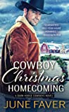Cowboy Christmas Homecoming (Dark Horse Cowboys, #4)