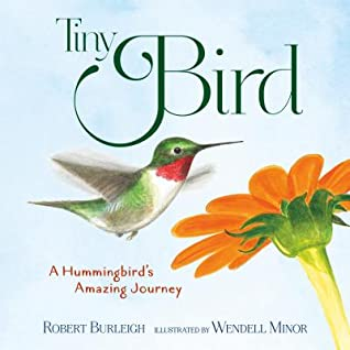 Tiny Bird by Robert Burleigh